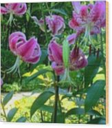 Lilly Love Wood Print