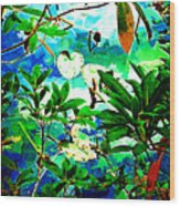Lilly Pods Wood Print