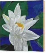 Lilly Pond Wood Print