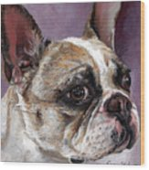 Lilly The French Bulldog Wood Print