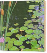 Lillypads And Cattails Wood Print