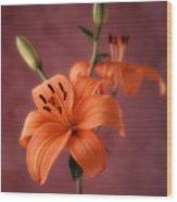 Lily 1 Wood Print