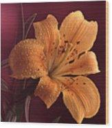Lily 14 Wood Print