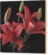 Lily 9 Wood Print