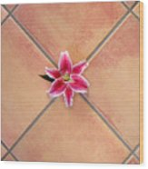 Lily Alone On Tile Wood Print