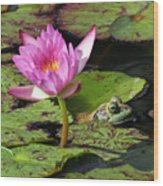 Lily And The Bullfrog Wood Print