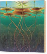 Water Lily - Transmute Wood Print