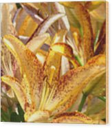 Lily Flower Garden Art Prints Canvas Floral Lilies Baslee Troutman Wood Print