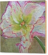 Lily From Paradise Wood Print
