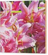 Lily Garden Floral Art Prints Pink Lilies Baslee Troutman Wood Print