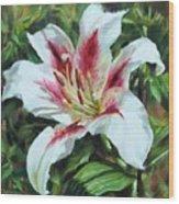 Lily Impression Wood Print