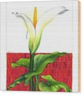 Lily In The Environment Wood Print