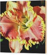 Lily Magic Wood Print