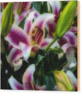 Lily Of The Field Wood Print