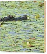 Lily Pad Gator Wood Print