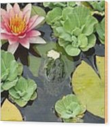 Lily Pad Lunch Wood Print