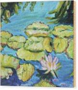 Lily Pads Mo Botanical Garden I Wood Print
