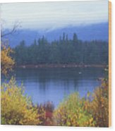Lily Pond Autumn Kancamagus Highway Wood Print