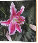 Lily Stem On Green Brocade Wood Print
