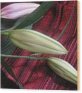 Lily Stem On Red Brocade Wood Print