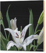 A White Oriental Lily Surrounded Wood Print