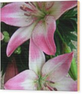 Lily Times Two Wood Print