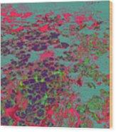 Lilypad 13 9 Wood Print