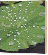 Lilypad Wood Print