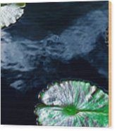 Lilypads And Sky Reflections Wood Print