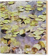 Lilypads W C Wood Print