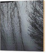 Limbs Wood Print