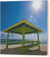 Lime Blue Wood Print
