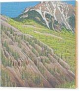 Lime Creek Canyon Wood Print