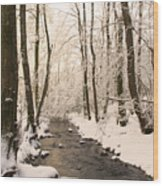 Limentra In Winter Wood Print