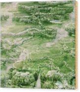 Limestone Detail Minerva Springs Yellowstone National Park Wood Print