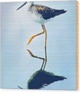 Lesser Yellow Legs Water Shadow Wood Print