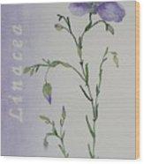 Linacea Wood Print