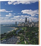 Lincoln Park And Diversey Harbor Wood Print
