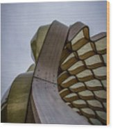 Abstract Of Peoples Gas Pavillon Wood Print