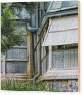 Lincoln Park Conservatory Dsc_7073 Wood Print