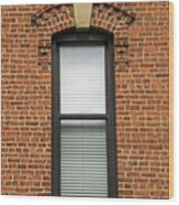 Lincoln Park Window Wood Print