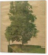 Linden Tree On A Bastion 1494 Wood Print