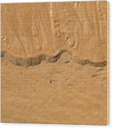 Line In The Sand Wood Print