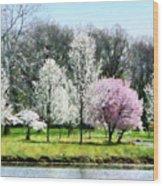 Line Of Flowering Trees Wood Print