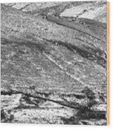 Lines And Landmarks Wood Print