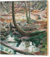 Lingle Stream Wood Print