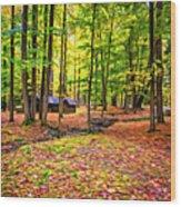 Linn Run Pennsylvania 2 - Paint Wood Print