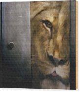 Lion Eye Wood Print