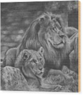 Lion Family Wood Print