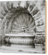 Lion Head Fountain Wood Print